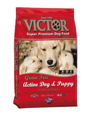 best puppy dog food brand
