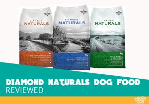 Diamond Naturals dog food rating