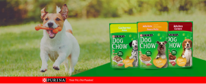 Purina Dog Chow ratings