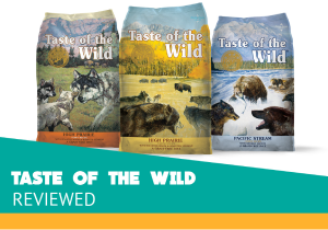 Taste of the Wild Reviews of the Grain-Free Dog Food