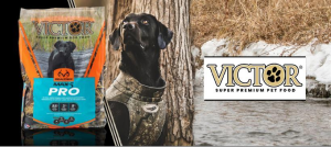 Victor dog food rating