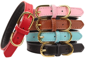 AOLOVE Basic Classic Padded Leather Pet Collars