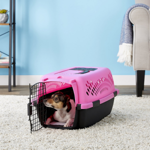Aspen Pet Dog & Cat Kennel