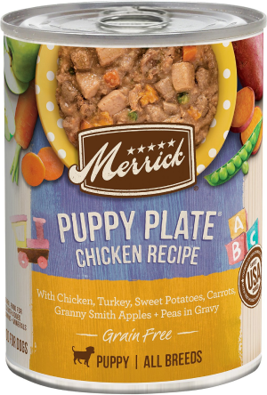 Merrick grain-free puppy plate beef recipe canned dog food beef