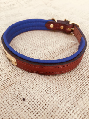 Personalized Padded Leather Dog Collar with Brass Nameplate