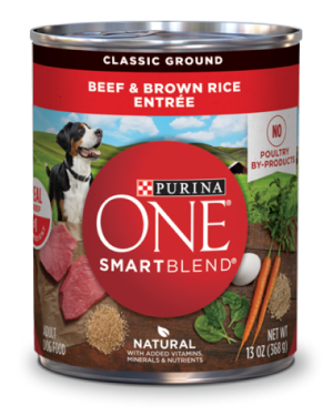 Purina ONE SmartBlend Beef & Brown Rice Entrée Classic Ground Wet Dog Food